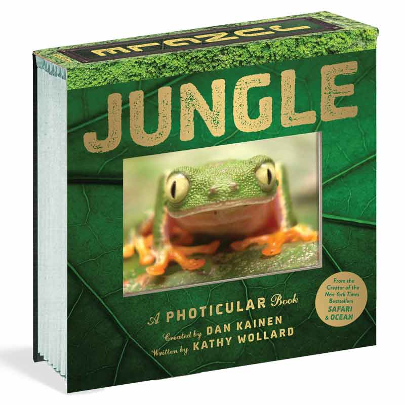 book about the jungle for children